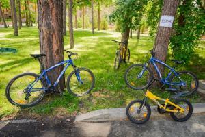 прокат велосипеды
